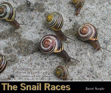 snail races 366px Photo Galleries